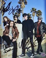 """""""Great White"""" Group Signed 8X10 Color Photo PAAS COA"""