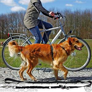 Bicycle & Jogging Leash | Lead 1.00-2.00 m/25 mm shock absorber Fully Adjustable