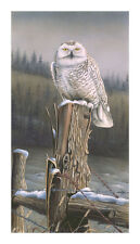 "18 ""Snowy Sentinel"" Owl 17x32 Paper Print by Robert Metropulos"