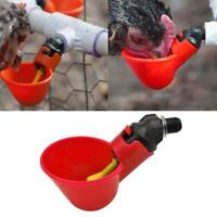 2/10pcs Automatic Chicken Drinker Cups Plastic Poultry Waterer Water Drinking