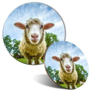 Mouse Mat & Coaster Set - Cute Sheep Lamb Face Animals Farm  #8389