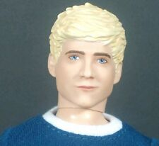 One Direction 1D Niall Doll 2012 Hasbro Video Collection with Box