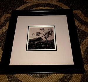 art work original, professionally framed