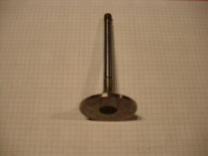 Fendt MWM- Einlassventil D226B. F384200210060