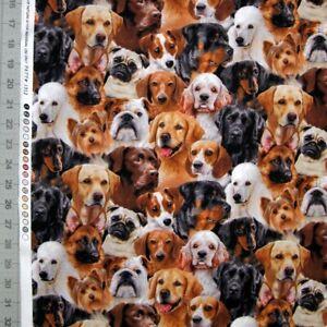 Animal Fabric - Dog Breeds Packed Faces 1312 Black - Elizabeth's Studio YARD