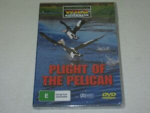 Plight Of The Pelican - Brand New & Sealed - All Regions - DVD