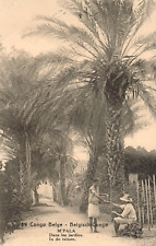 BELGIUM CONGO PICTORIAL POSTAL STATIONERY CARD USED Nº 89 M'PALA PALMS TO SPAIN