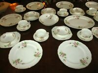 Canonsburg Hallmark Rose Am Beauty Pattern China Set for 8 w/ serving pieces
