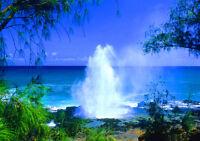"BEACH KAUAI HAWAII NEW A1 CANVAS GICLEE ART PRINT POSTER FRAMED 33.1""x23.4"""