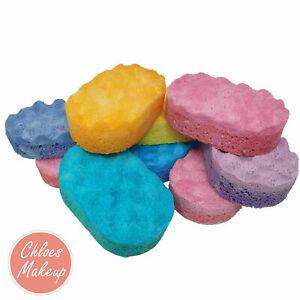 Soap Filled Exfoliating Sponges | SLS Free Vegan | Bath Shower Fragrances Sponge