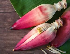 BANANA BLOSSOM FLOWER POWDER Natural Healthy Best Herbal Quality 100%