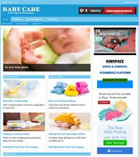 Baby Care Website Business For Sale Work From Home And Easy To Manage Website