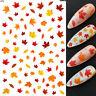 Nail Art Water Decals - Pretty Autumn Leaves Fall Brown Leaf Orange Maple Multi