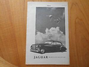 Vintage Jaguar Advert -- Original -- from 1953
