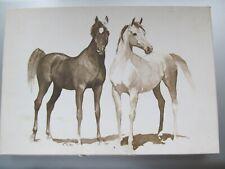 VINTAGE HALLMARK USED BOXED SET OF ARABIANS HORSE STATIONERY