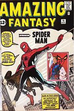 STAN LEE Signed 24x16 Photo Display SPIDERMAN Amazing Fantasy COA