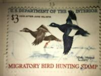 Migratory Bird Hunting Stamp White Winged Scoters