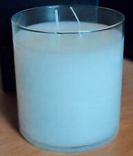 ICED SNOWBERRIES~GloLite Jar~$26~Brightest Candle~Winter~CHRISTMAS~Partylite~NEW