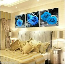 "Set of three Paint by Number kit 50x50cm (20x20"") Blue Roses DIY PBN XK17002"