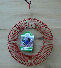 Songbird Essentials Red Whole Peanut Metal Wire Wreath Squirrel and Jay Feeder