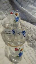 Vintage Crystal Liqueur German Cordial Shot Glass-4 Hand Painted With Phrases 1