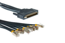 Cisco Compatible 8 Lead Octal Cable, 10ft, CAB-OCTAL-ASYNC-10, Lifetime Warranty