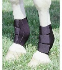 Hind Leg Training Neoprene Sweat Riding Horse Ankle Boots Black No Slip