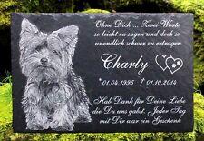 Tiergrabstein Fotogravur Grabstein Schiefer Gedenkstein Gravur Hund