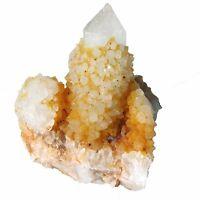 Citrine and White Spirit Quartz  Sunshine  Cactus Crystal  cc1888