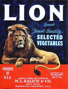 *Original* LION Jungle King Majestic Cat Vegetable Crate Label NOT A COPY!
