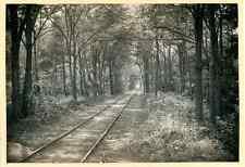 France, Pointe de Grave, Chemin de fer sous les bois  Vintage print. Gironde. Aq