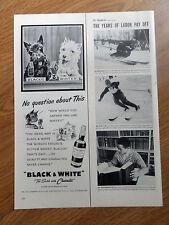 1954 Black White Scotty Scottish Terrier Westie Ad