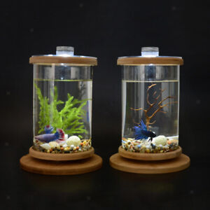 Rotatable Desktop Aquarium Glass Cylinder Betta Fish Tank Planter Home Decor