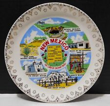 NEW MEXICO State Souvenir Plate Navajo Weaver, Taos Indian Village, White Sands+