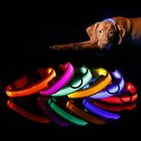 Dog Pet Collar Nylon LED Light Night Safety Light-up Flash Glow in the Dark New