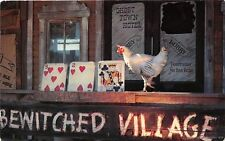 Rapid City Sd '65 Beak Maverick with High Card @ Bewitched Village Reptile Gardn