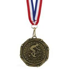 CYCLING CELEBRATION SHIELD TROPHY SOLID RESIN AWARD FREE ENGRAVING A901B