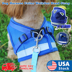 Small Dog Breathable Mesh harness Vest Collar soft chest strap XXS-L Leash set