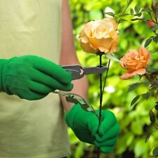 2 in 1 Thorn Stripper & weeding Tool. Remover Leaf Xmas Holly Rose gardening