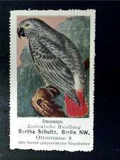 Cinderella Poster Stamp Reklamemarke - African Gray Parrot-18720