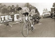 Merckx Dominates Presse E Sports Vintage Cycling Tour de France Print Poster