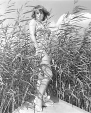 SENTA BERGER X 10 GLOSSY PHOTO #4