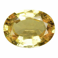 Sri Lanka Yellow Loose Natural Sapphires