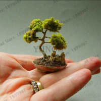50 Pcs Seeds Miniature Pine Plants Japanese Potted Pine Bonsai Tree Garden NEW T