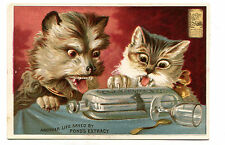 Victorian Trade Card PONDS EXTRACT remedy Dog & Cat with mouse in a bottle