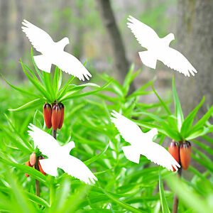 Avertissement 10cm Blanc Habicht Autocollants Oiseau Fenêtre Vitre Protection
