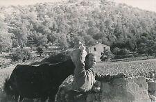 ÎLE DE MAJORQUE c. 1935 - Paysan de Pollença Espagne - P 515