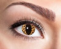 Katze Leopard Kontaktlinsen