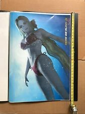 "Dead or Alive 3 Helena Poster Huge 28"" rare Official Doa sexy swimsuit"