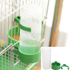 1~2X Green Plastic Pet Bird Drinker Feeder Waterer With Clip for Pigeon